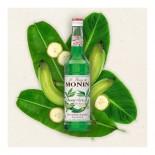 Xarope Monin Banana Verde 700 ml