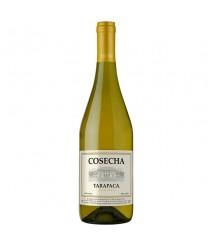 Vinho Cosecha Tarapaca Chardonnay 750 ml