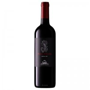 Vinho Nero D Avola Sicilia Sallier La Tour 750 ml