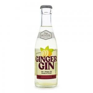 Gin Tonic Easy Booze Ginger Gfa 200 ml