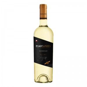 Vinho Paso De Los Andes Sauvignon Blanc 750 ml